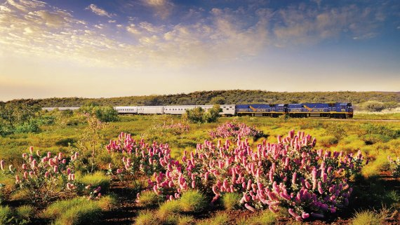 Best of The West with Radiance of the Seas & Indian Pacific